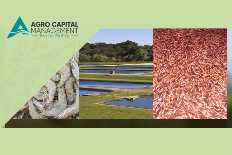 Agro Capital Mangement